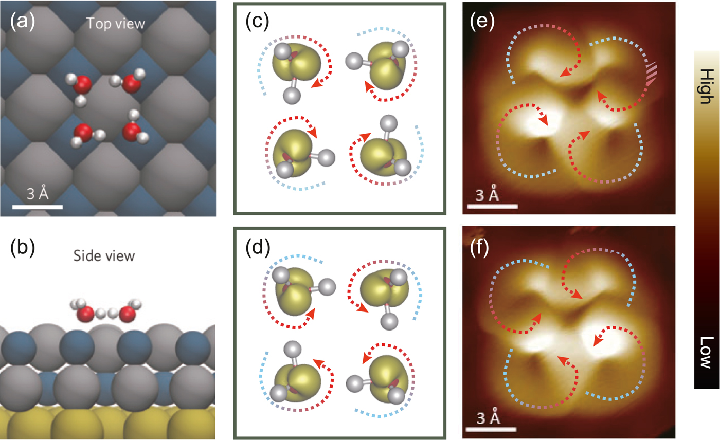 Perspective: Structure and dynamics of water at surfaces probed by