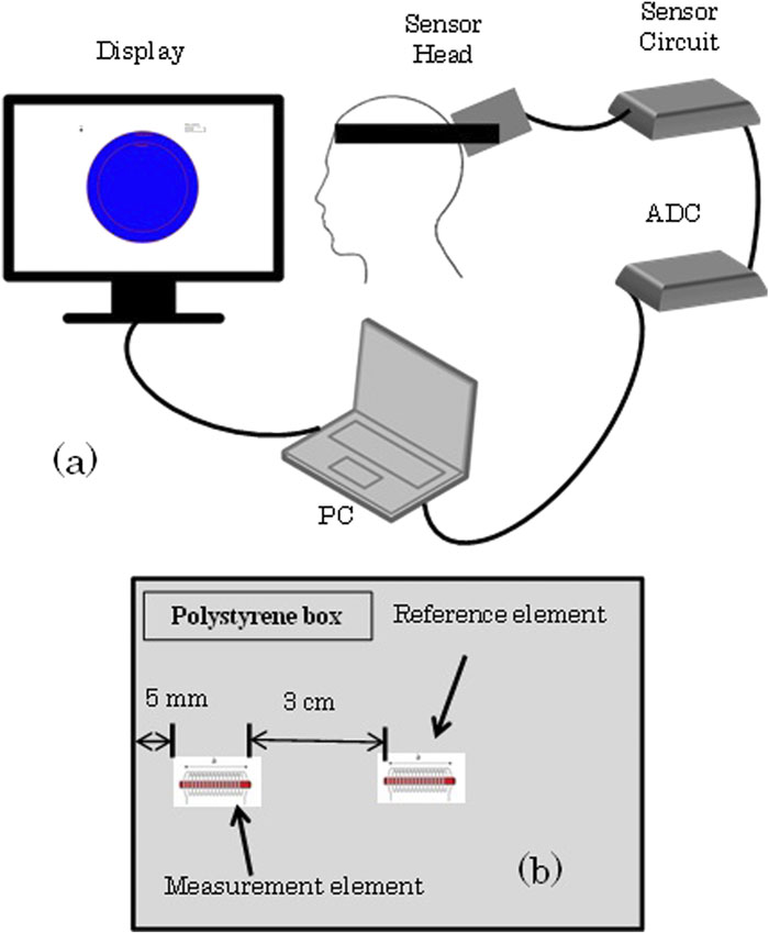 Real-time brain activity measurement and signal processing