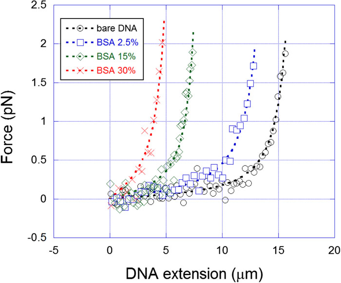 Unfolding DNA condensates produced by DNA-like charged