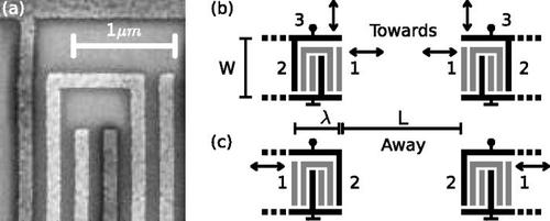 Surface acoustic wave unidirectional transducers for quantum