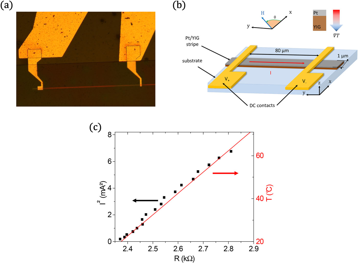 Spin Seebeck effect in nanometer-thick YIG micro-fabricated strips
