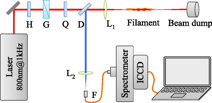 Revisiting the mechanism of nitrogen fluorescence emission induced