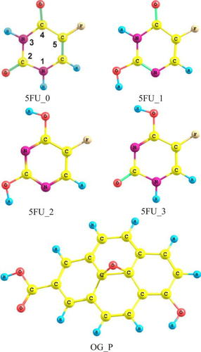 Infrared spectra of 5-fluorouracil molecules isolated in