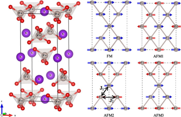 Negligible spin-orbit coupling effect in the Mott-insulating