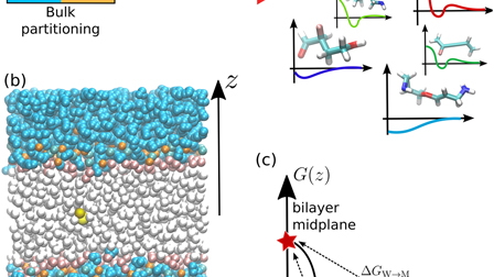 In silico screening of drug-membrane thermodynamics reveals