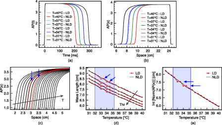 Nonlinear diffusion and thermo-electric coupling in a two