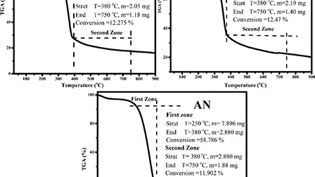 Pyrolysis characteristics and kinetic parameters assessment