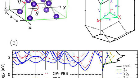 Optical properties of body-centered tetragonal C4: Insights from