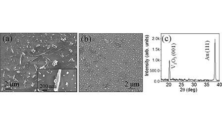 Spectroscopic study of native defects in the semiconductor to metal