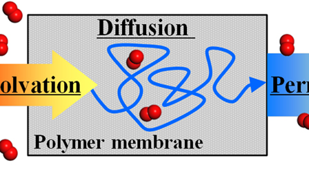 Structure and permeability of ionomers studied by atomistic