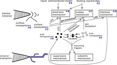Plasma physics of liquids—A focused review: Applied Physics