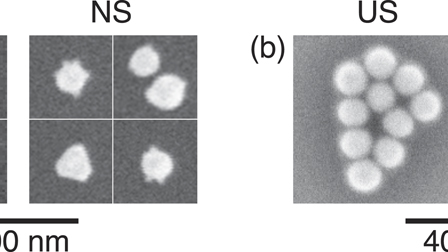 Invited Article: Optical trapping of ultrasmooth gold nanoparticles