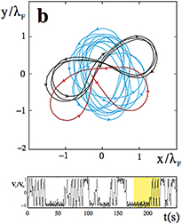 Transition to chaos in wave memory dynamics in a harmonic