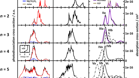 Photochemistry and spectroscopy of small hydrated magnesium