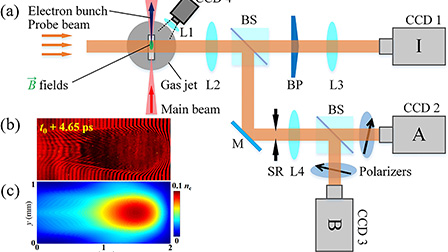 Ultrafast dynamics of magnetic vortices and pulse collapse in a