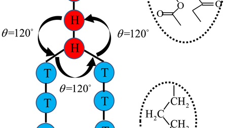 Self-assembly of phospholipid molecules in solutions under