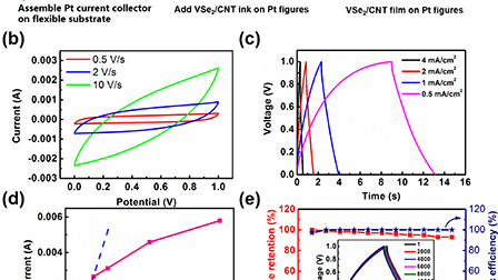 VSe2/carbon-nanotube compound for all solid-state flexible