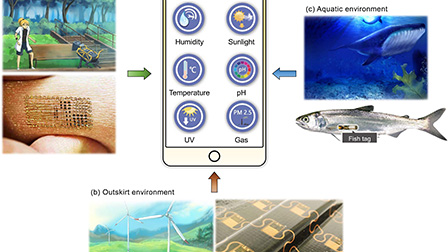 Stretchable sensors for environmental monitoring: Applied Physics