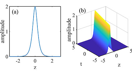 Recent progress of study on optical solitons in fiber lasers