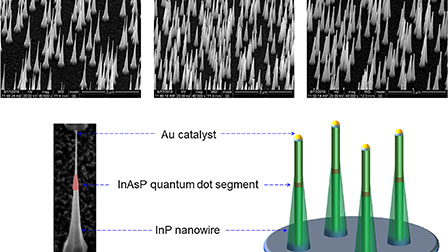 Wavelength-tunable InAsP quantum dots in InP nanowires