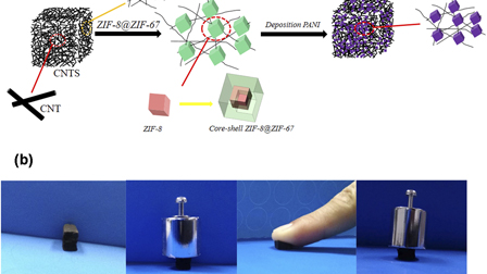 Highly compressible 3-D hierarchical porous carbon nanotube