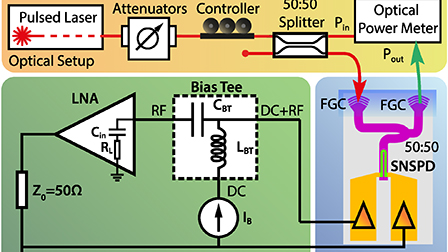 Analysis of the detection response of waveguide-integrated
