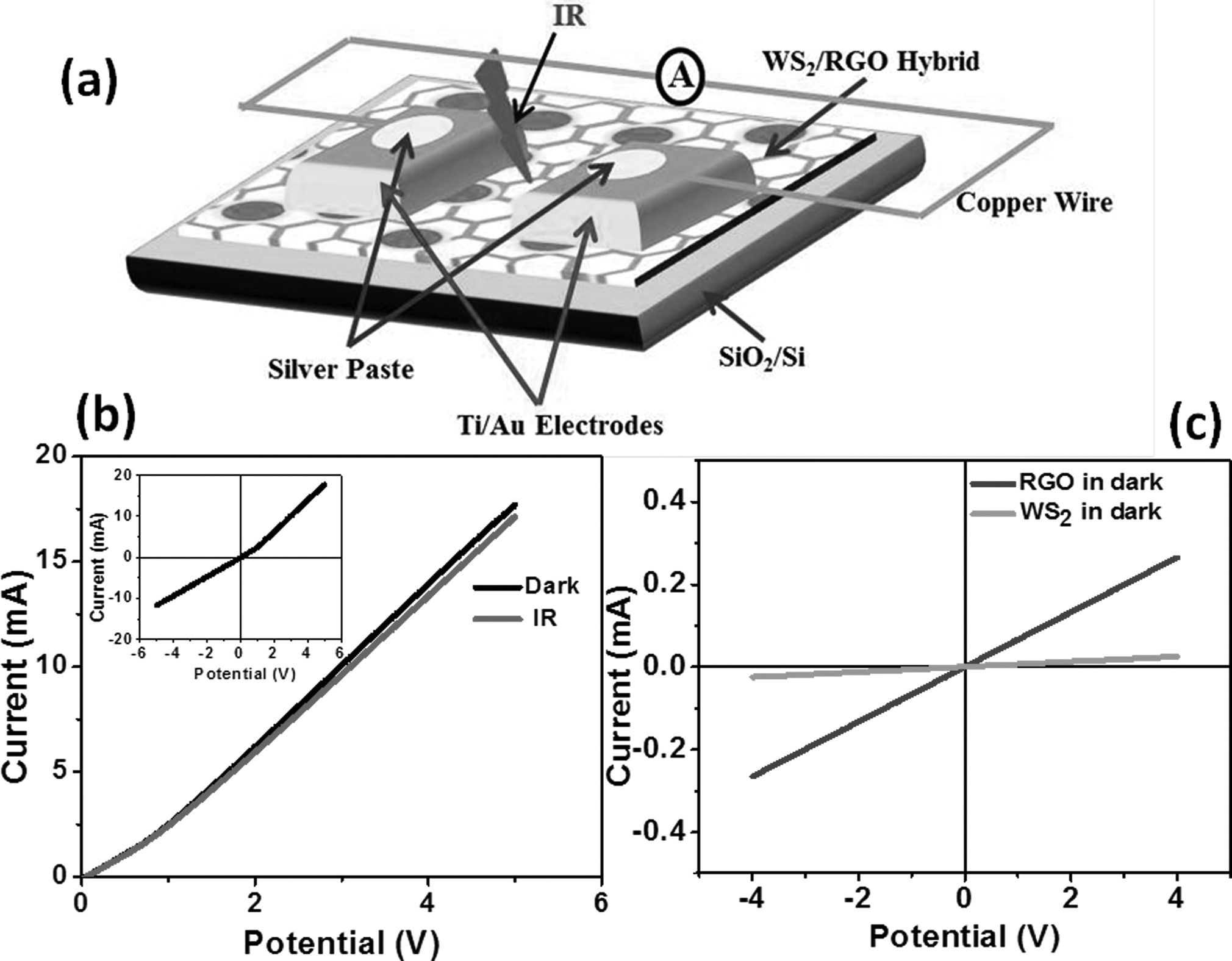 Negative infrared photocurrent response in layered WS2/reduced