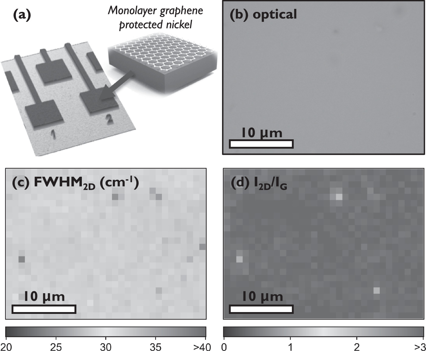 Protecting nickel with graphene spin-filtering membranes: A single