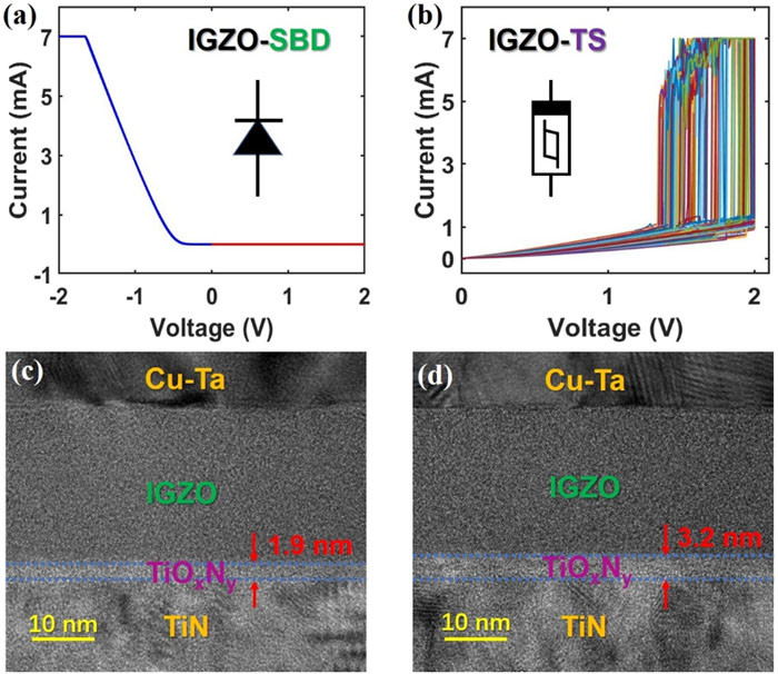 Stochastic neuron based on IGZO Schottky diodes for neuromorphic