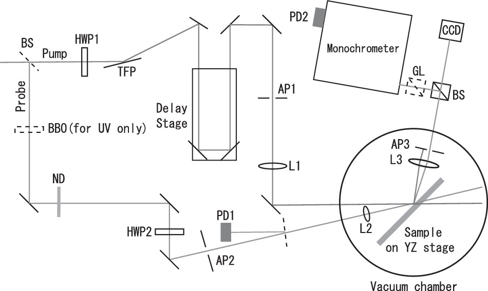 Femtosecond laser ablation dynamics of fused silica extracted from
