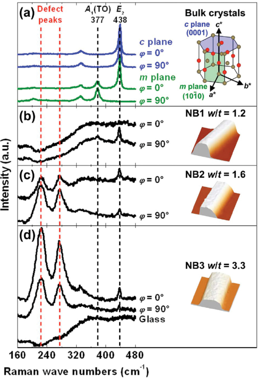 Invited Review Article: Combining scanning probe microscopy with